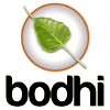 Bodhi Linux on 32GB USB Drive